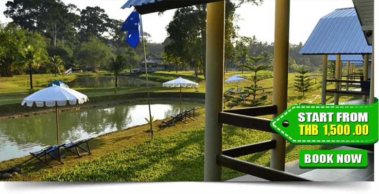 Phuket-Campground-02