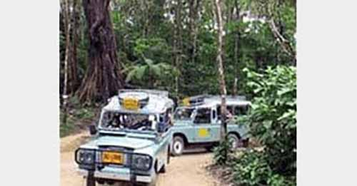 Jungle Adventure Tour